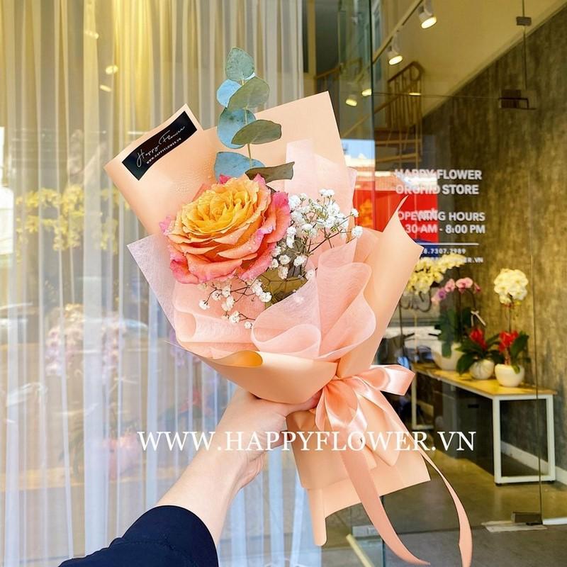 Hoa hồng cam khoe sắc