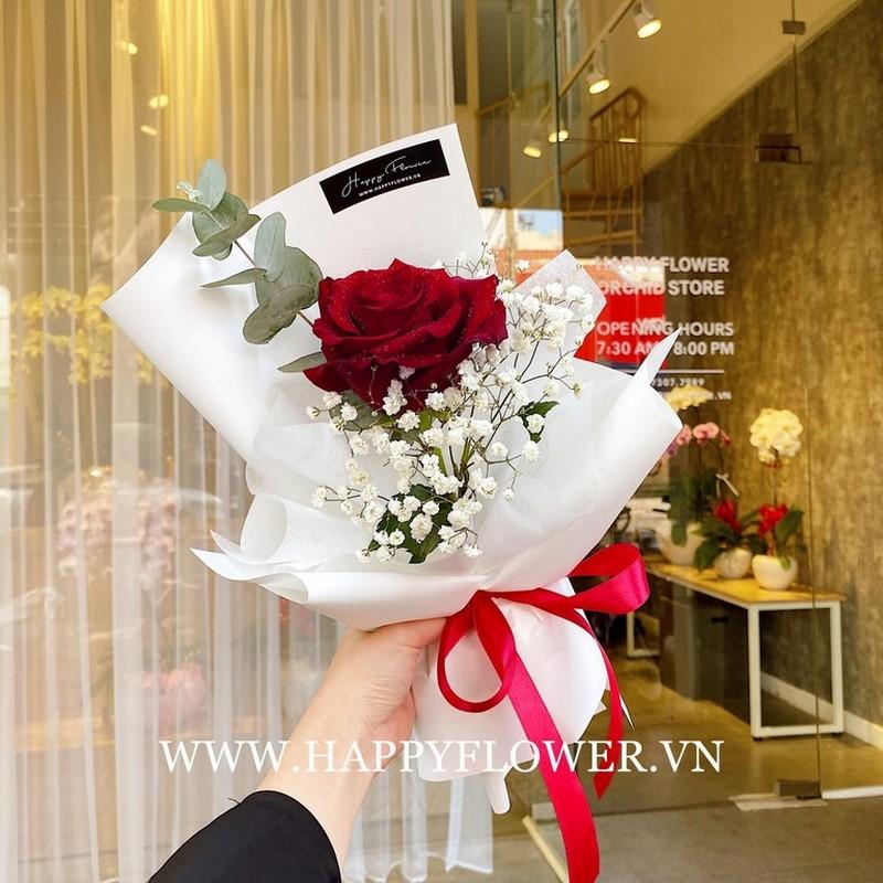 Một bông hồng đỏ rực