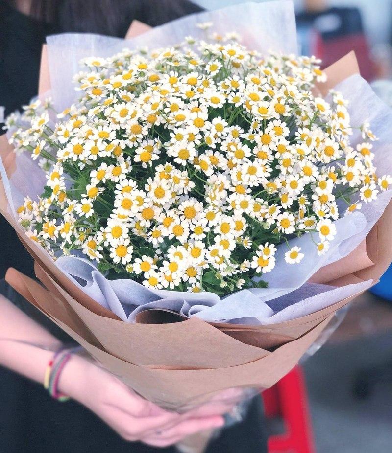 bó hoa cúc tana dành cho sinh nhật tháng 11