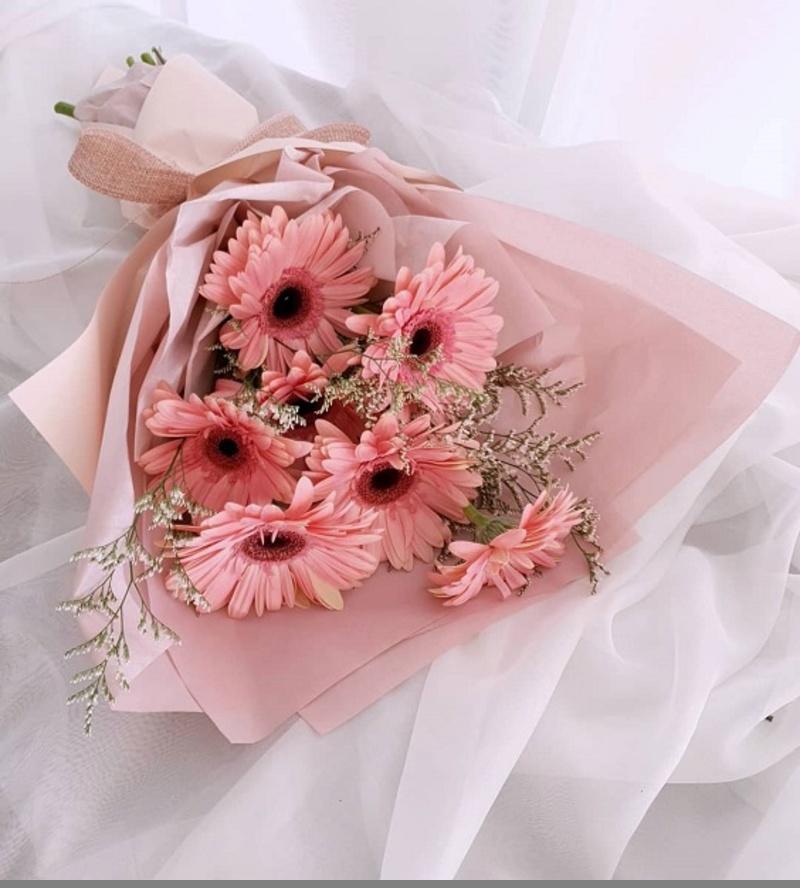 bó hoa đồng tiền hồng dành cho sinh nhật tháng 11