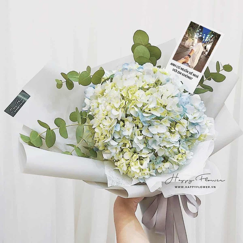 Bó hoa cẩm tú cầu tặng sinh nhật