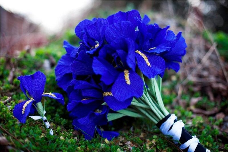 bó hoa diên vỹ xanh cho sinh nhật tháng 2