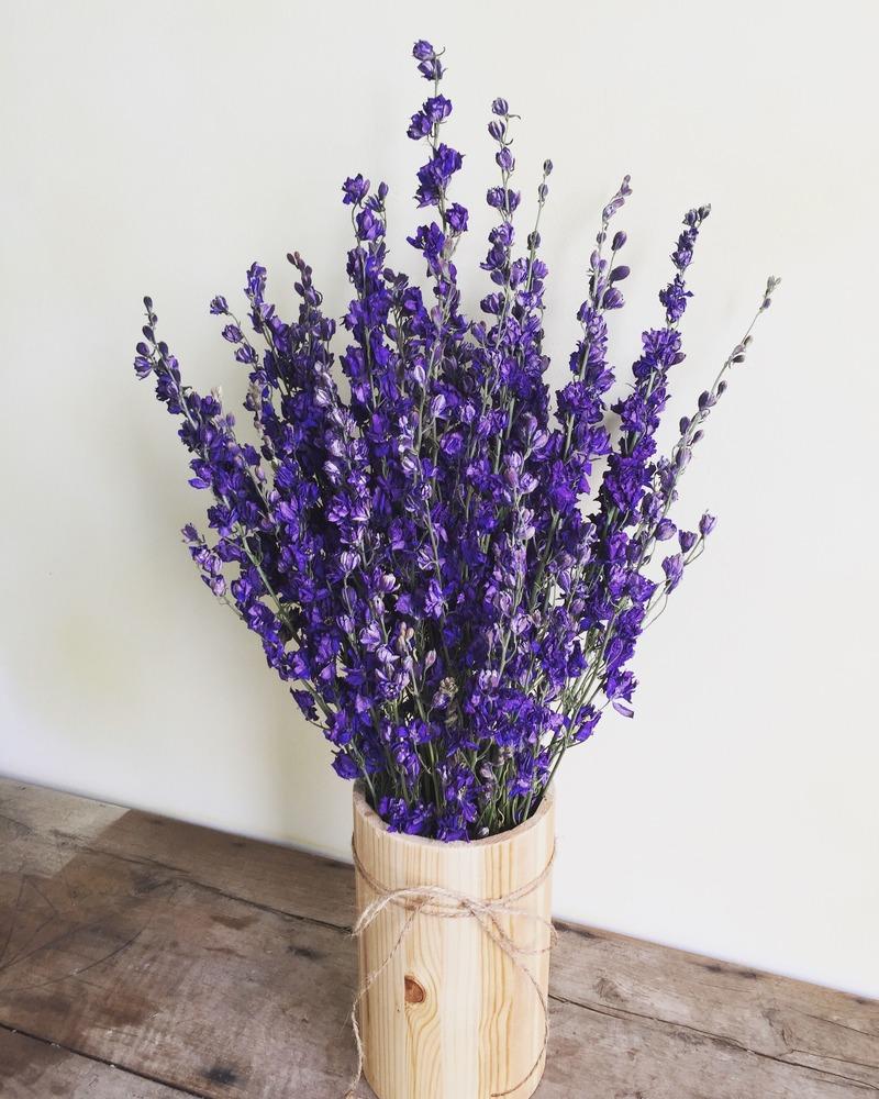 chậu hoa sinh nhật tháng 2 violet tím khô