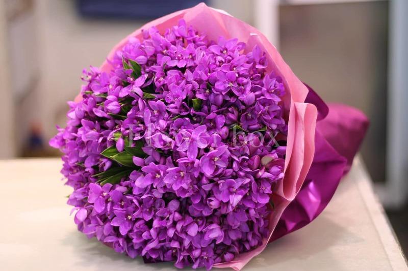 bó hoa sinh nhật tháng 2 violet tím