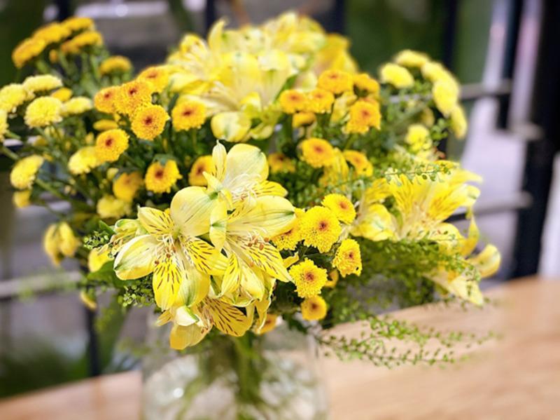 hoa sinh nhật tháng 3 thủy tiên vàng rực rỡ