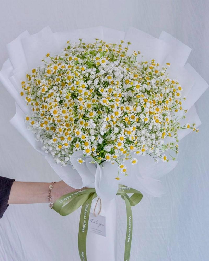 bó hoa cúc giấy gói trắng