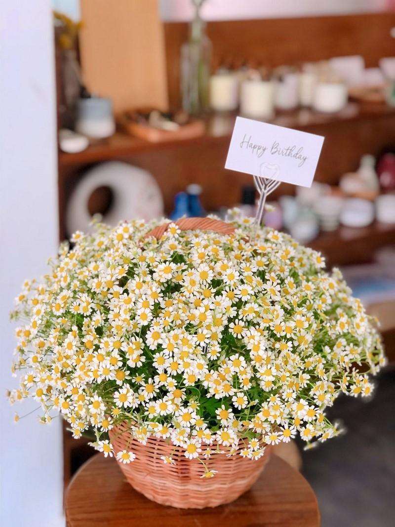 giỏ hoa cúc đẹp và đơn giản
