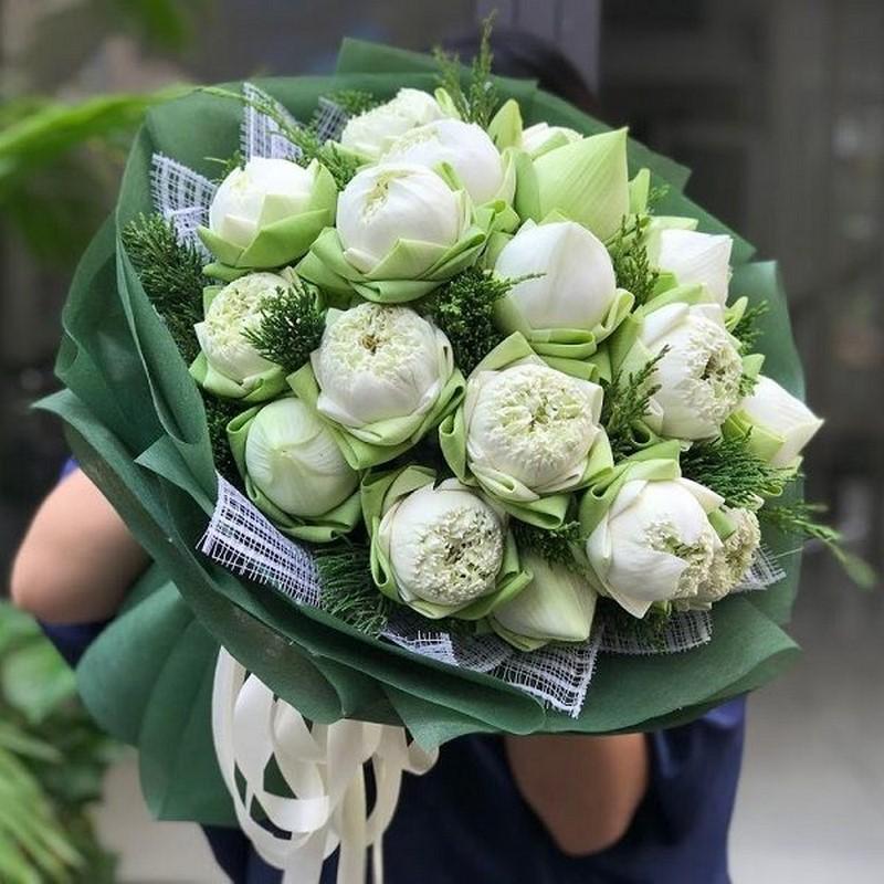 bó hoa sen trắng xanh đẹp
