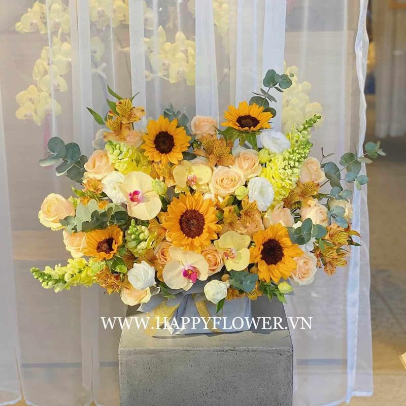 hộp hoa tốt nghiệp hoa hồng kem mix hướng dương lan hồ điệp vàng