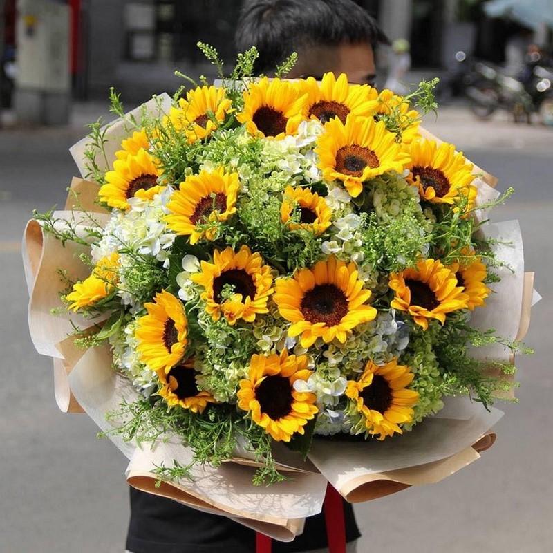 Hoa hướng dương kết hợp hoa cẩm tú cầu
