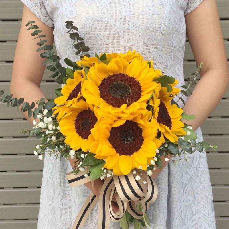Hoa hướng dương chụp ảnh đẹp