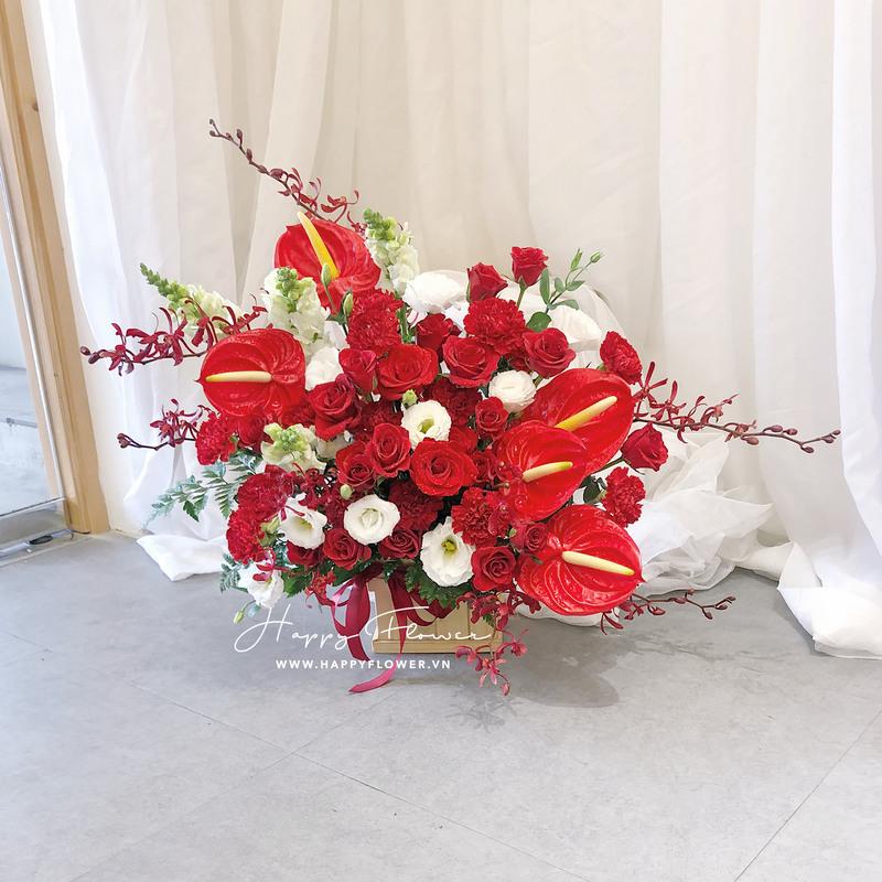 kệ hoa khai trương hoa hồng môn đỏ rực rỡ