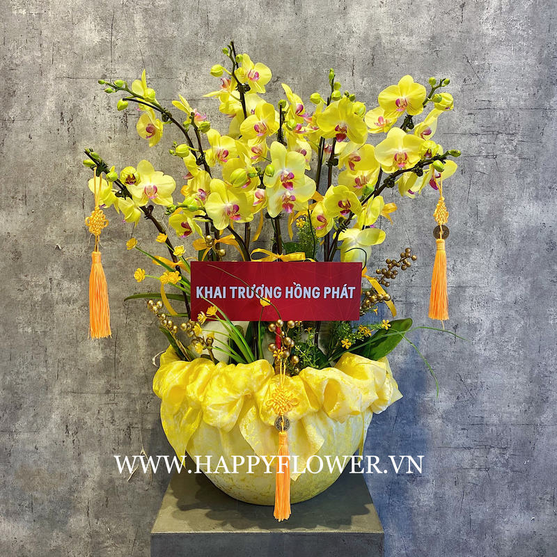 Mẫu hoa lan hồ điệp vàng khai trương độc lạ